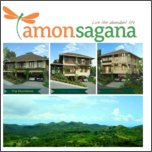 content/attachments/13176-amonsagana.jpg