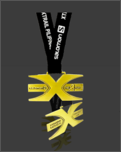 content/attachments/16064-salomon-finishers-medal.png