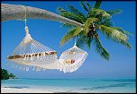 content/attachments/4439-travel-business-hammock-beach.jpg